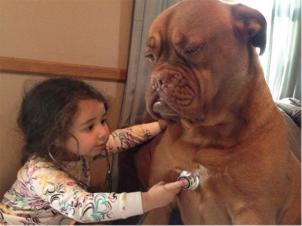 dog_kids2_0000_dog1