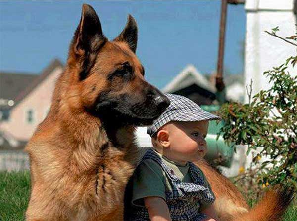 dog_kids2_0002_dog3