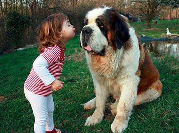 dog_kids2_0004_dog5