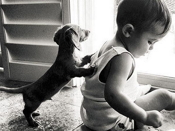 dog_kids2_0007_dog8