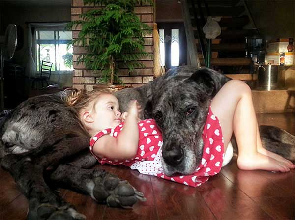 dog_kids2_0009_dog10