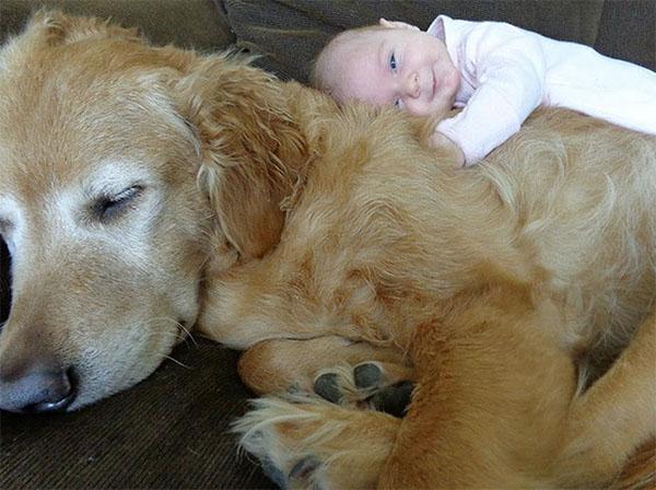 dog_kids2_0011_dog12