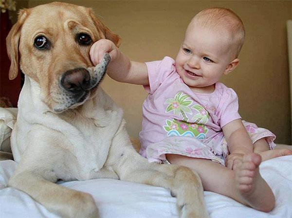 dog_kids2_0012_dog13