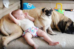See Why Dogs Are So Great For Kids!