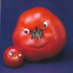 tomato.cc12