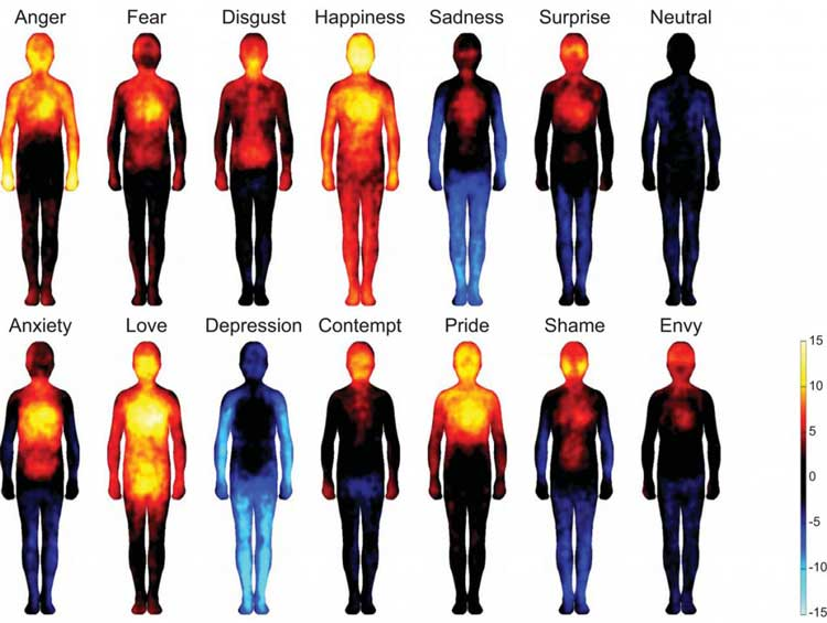 body heat map chart