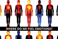 Wondering where you feel emotions in your body? These images will show you!