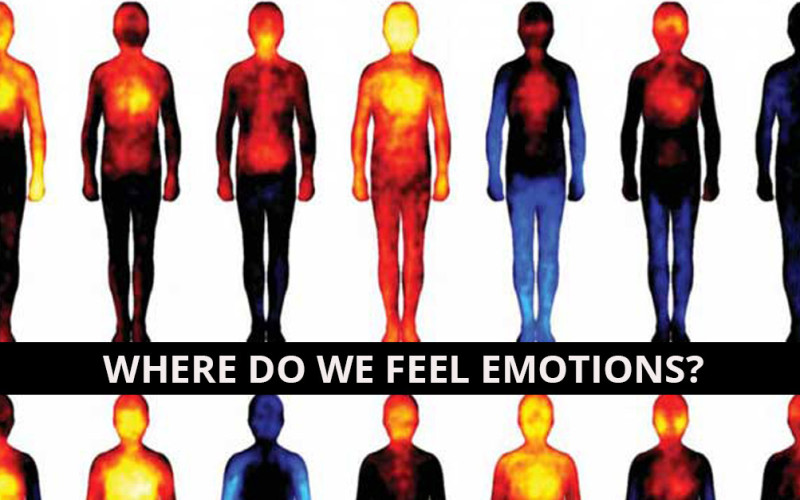Body_heat_maps on Language Emotions