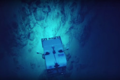 They Dropped A Camera Into The Ocean And Recorded Something Incredible