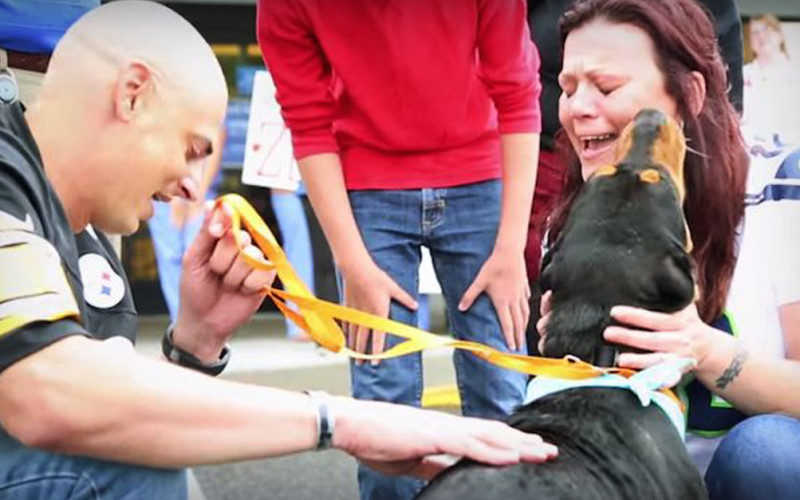 Emotional Reunion for Family Dog Found Alive Years Later
