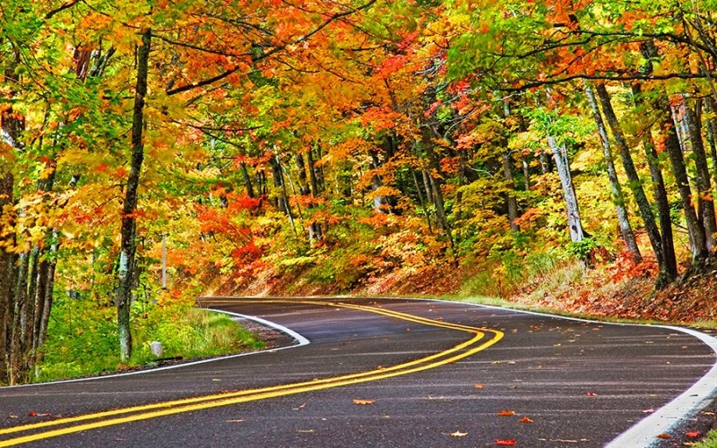 12 INCREDIBLE Places To Drive To See The Colors Of Fall